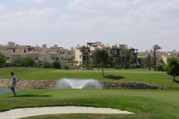 roda golf (7)