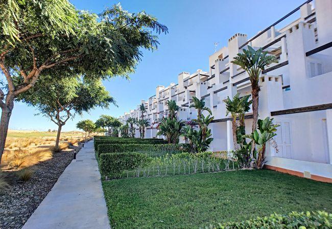 Apartamento em Roldan - Las Terrazas - Andrea