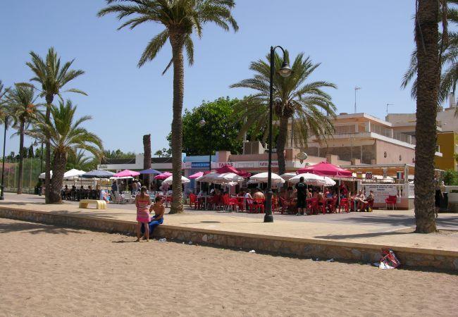 Cafeteria open all year on the promenade in Mar de Cristal