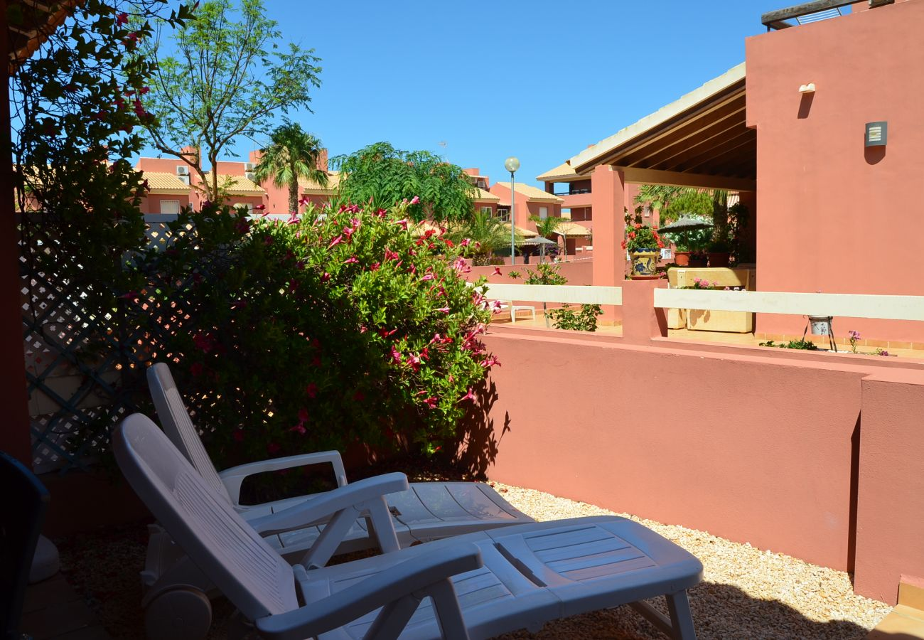 Terrace in Albatros Playa 2 - Resort Choice