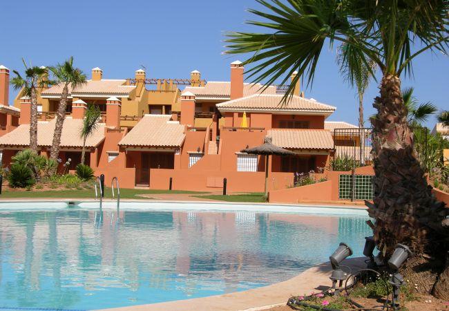 Large communal pool in Albatros 3 - Resort Choice