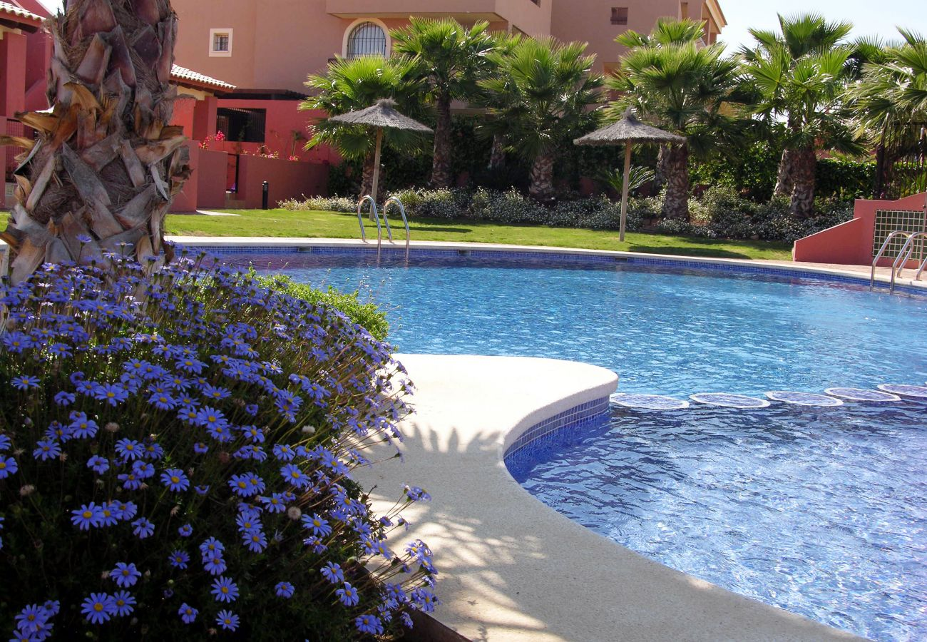Large front swimming pool in Arona 1 Complex - Resort Choice