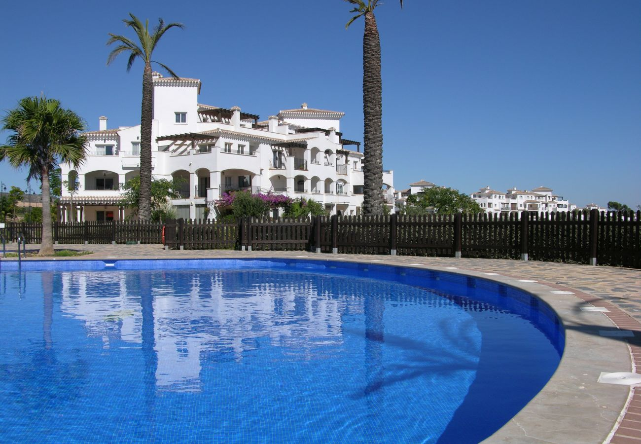 Beautiful swimming pool of Hacienda Riquelme apartment