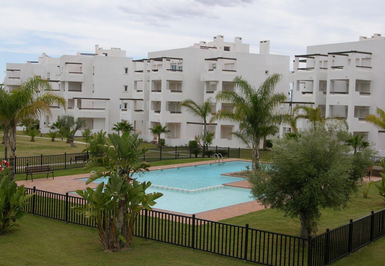 Beautiful swimming pool of Las Terrazas de La Torre Golf apartment