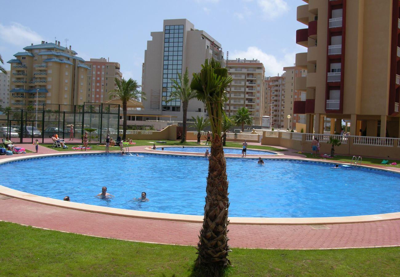 Large swimming pool in Los Miradores del Puerto complex - Resort Choice