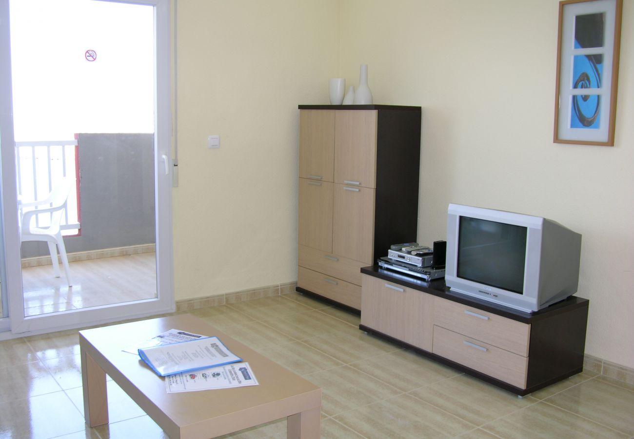 Lovely Living Room of Seychelles Apartment