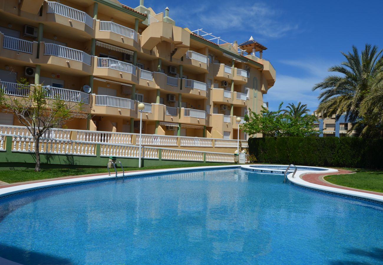 Beautiful swimming pool and gardens - Resort Choice