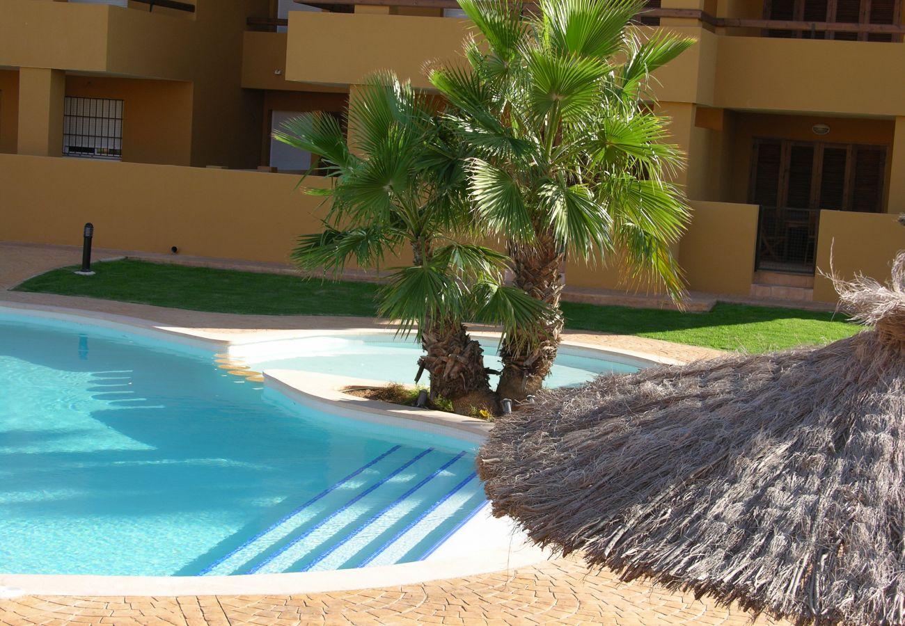 Swimming pool in center of Albatros 3 - Resort Choice