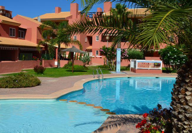 Large outdoor swimming pool in Albatros 2 - Resort Choice