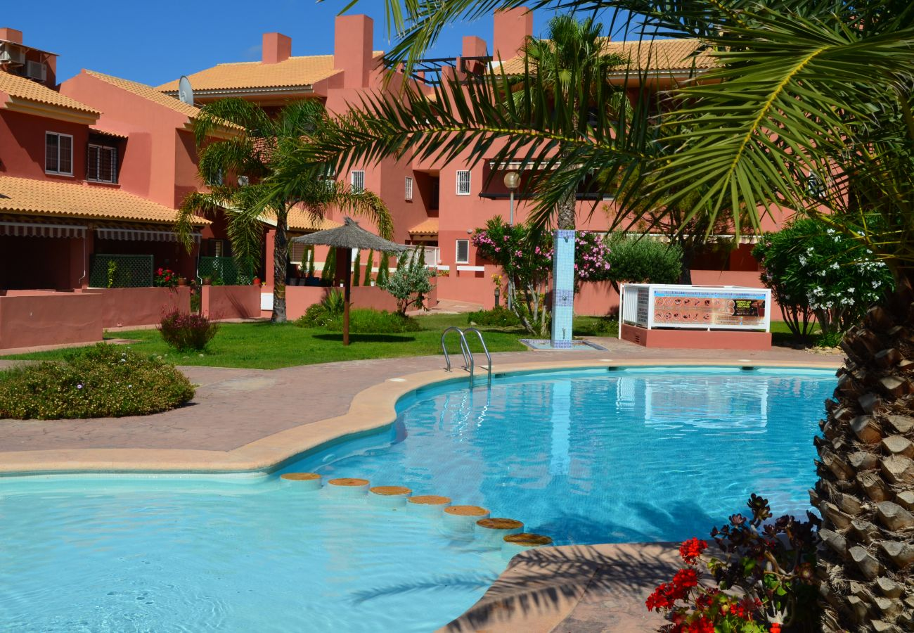 Large outdoor swimming pool in Albatros 2 - Resort Choice