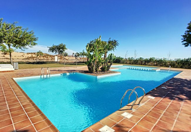 Beautiful swimming pool of Las Terrazas de La Torre Andrea apartment