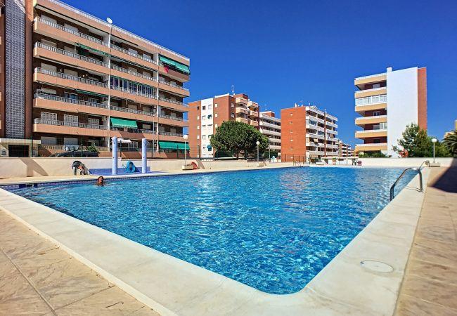 Apartment in Torrevieja - Apartment Punta Prima - Suecia